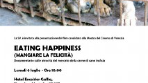 """VIDEO YouTube. """"Eating happiness"""": ecco perché in Oriente si … – Blitz quotidiano"""