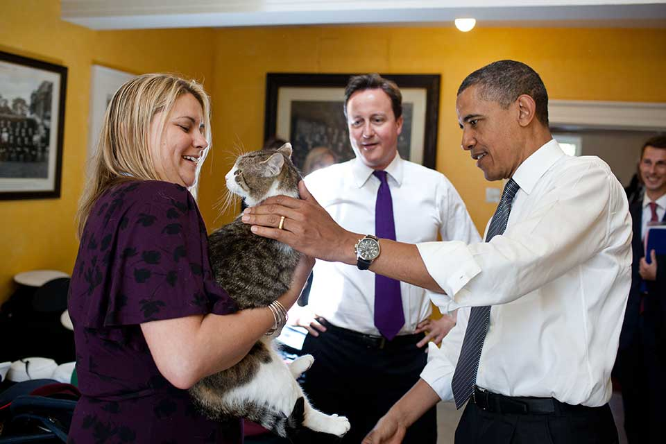 2011-Larry_the_Cat_-_May_2011