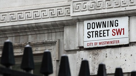 Due nuovi gatti a Downing Street – GreenStyle