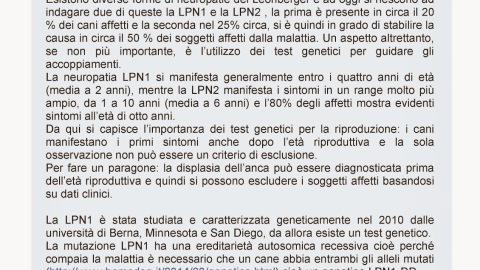 LPN1-LPN2 Polineuropatie del Leonberger