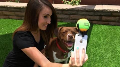 Il geniale accessorio per il selfie perfetto con il vostro cane (FOTO E … – greenMe.it