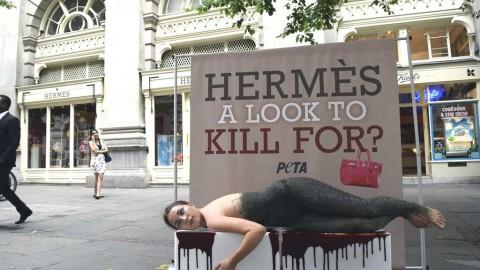 Accordo tra Hermès e Jane Birkin, il nome dell'attrice resta sulla … – LifeGate