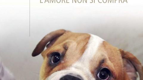 La fabbrica dei cuccioli. Il libro sul traffico dall'Est di cani e gatti
