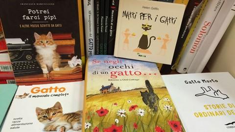 Cinque imperdibili libri sui gatti – GraphoMania (Blog)