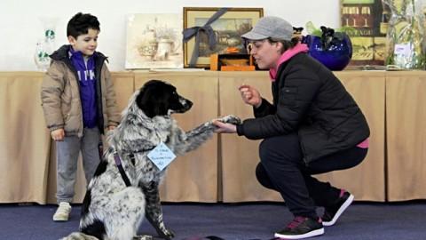Festa del Cane Bastardino. Radio Lady protagonista per la 36esima … – gonews