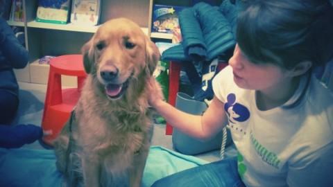 Pet therapy: cos'è, come funziona e quali sono i suoi benefici – nostrofiglio.it