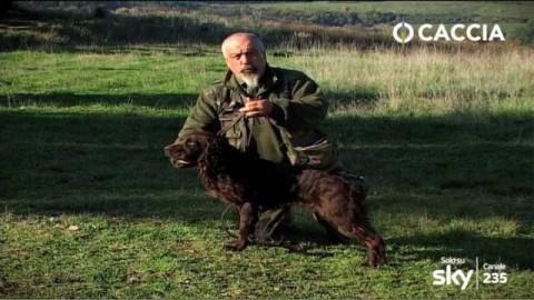 Caccia e Cani: Spaniel Tedesco, cane da cerca – Caccia Passione