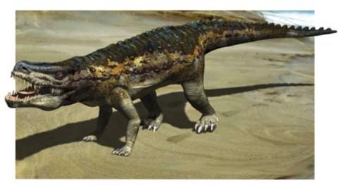 Trovati gli antenati dei dinosauri, vecchi di 230 milioni di anni – Il Faro