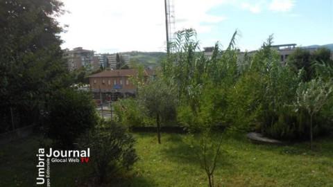 Ponte San Giovanni, stazione, canneti con topi e insetti – Umbria Journal il sito degli umbri