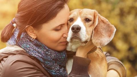 I cani comprendono quanto li amiamo – GreenStyle