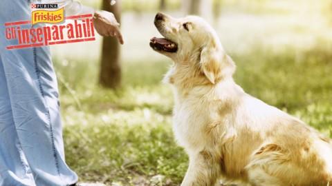 Bisogni dei cani: evita le multe! – Petpassion.tv