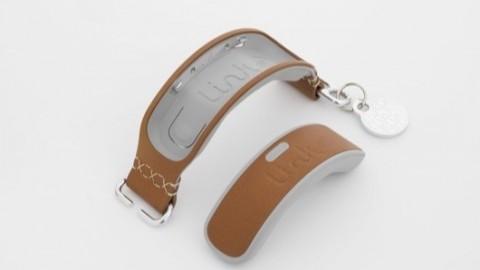Link Akc: il collare Smart per i nostri amici a 4 zampe – appletvitalia.it (Blog)