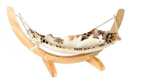 50 gadget per il tuo gatto – Wired.it