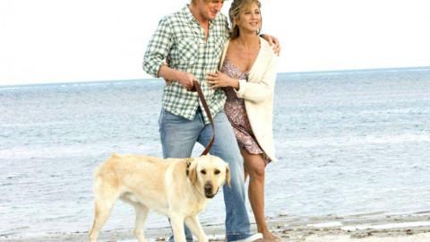 Il segreto della coppia felice? Avere un cane – CheDonna.it