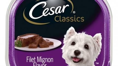 Cibo per cani, ritirate confezioni Cesar in America: pericolo … – Il Messaggero