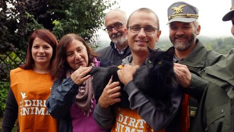 La storia a lieto fine del gatto Dada, salvo dopo il terremoto