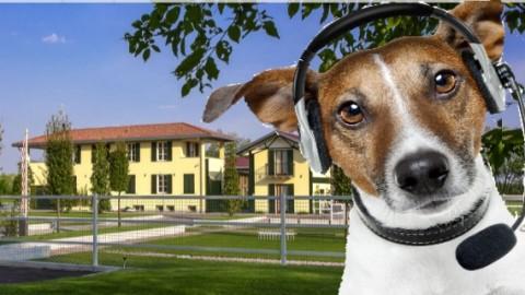 Villa Sant'Uberto, la Sanremo dei cani – Legnanonews