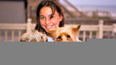Animali domestici: come scegliere quello giusto per il vostro bambino – nostrofiglio.it