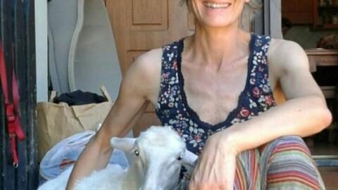 Ecco Totta, la pecorella salvata che dorme coi bambini – Il Tirreno