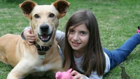 Bambini e animali domestici, una relazione molto speciale che fa … – Blasting News