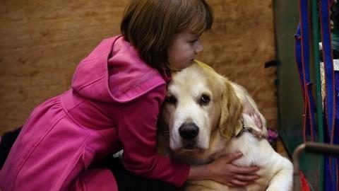 Nuova tassa sui cani, ecco chi deve pagare – Donna Moderna