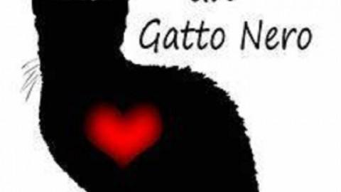 Home Animali XIII Gatto nero day. Giovedì 17 novembre molti paesi … – redazione (Comunicati Stampa)