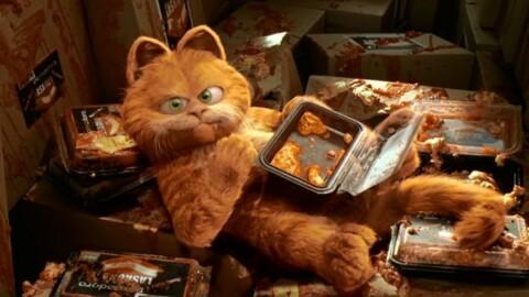 Dagli Aristogatti a Pets: ecco i 14 migliori film sui gatti al cinema – Cinematographe