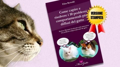 Animali: come capire e risolvere i 10 problemi comportamentali più … – Meteo Web