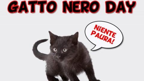 """Il 17 Novembre si celebra il """"Gatto Nero Day"""", la giornata mondiale … – Meteo Web"""