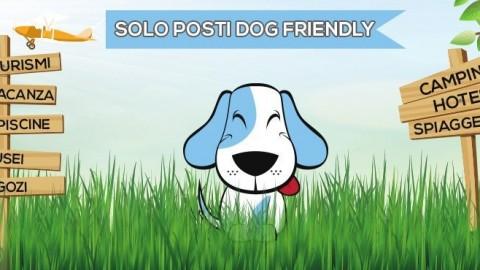 Arriva Tripfordog.com, il motore di ricerca per hotel che accettano cani – Meteo Web
