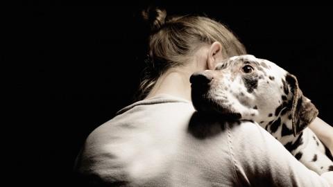 """""""Gli animali domestici sono fondamentali per la salute mentale degli … – L'Huffington Post"""