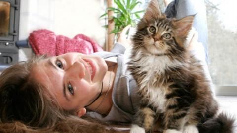 Catfulness: felice come un gatto in 7 settimane – Donna Moderna