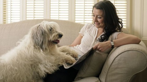 Psicologia: l'importanza degli animali per le persone con malattie … – Benessereblog.it (Blog)