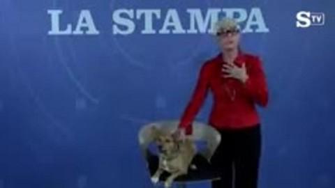Al Tangram Teatro Torino storie di uomini e cani più o meno famosi … – La Stampa