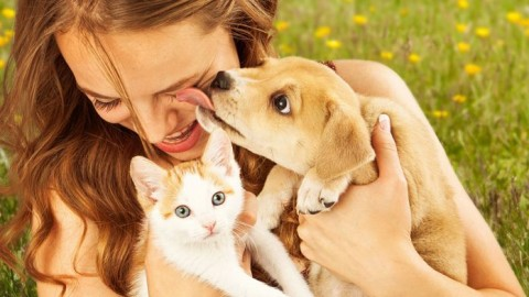 Hai cani o gatti? Attento alle infezioni che possono trasmettere – Ok Salute e Benessere