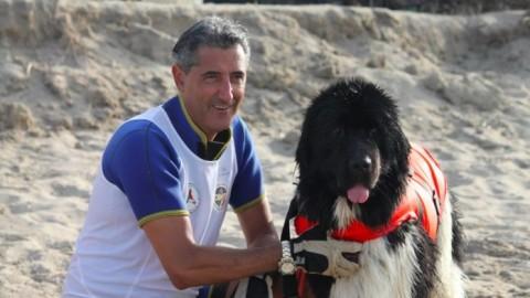 """Cani da salvataggio, chi sono e come nascono gli """"angeli a quattro … – Borderline24 – Il giornale di Bari"""