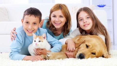 Eurispes: -10% gli italiani che hanno un animale da compagnia in … – Il Sole 24 Ore