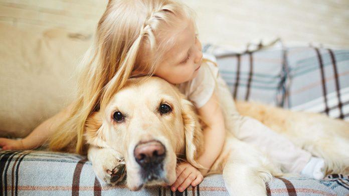 Meglio Un Fratellino O Un Cagnolino Ok Salute E Benessere Pet Community And Social Network