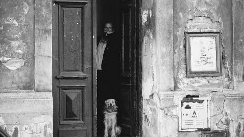 Scappare dalla porta di casa e abbaiare al suono del campanello … – Riviera24.it