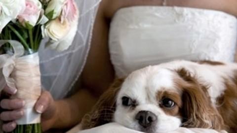 Napoli, sposa si presenta all'altare accompagnata dal cane, il prete … – Il Messaggero