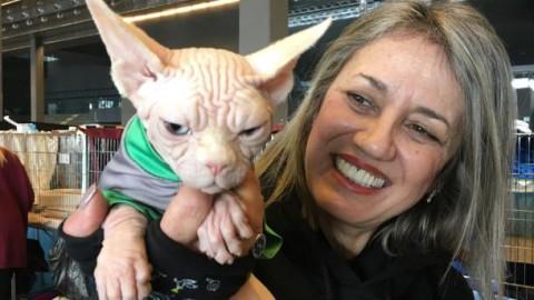 Gatti in sfilata alla Fiera di Genova: tra di loro Winston star di facebook – Il Secolo XIX