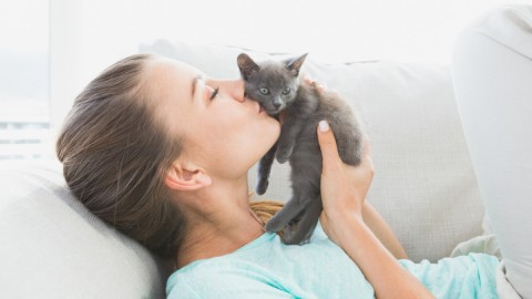 Gli italiani hanno meno animali domestici – MondoEcoBlog.com (Blog)