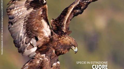 #Natura: nuova rivista Arma Carabinieri dedicata ad ambiente e territorio