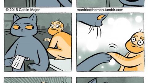 Questo fumetto ci mostra cosa succede quando i gatti e gli umani si … – Dailybest