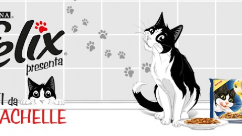 I gatti fanno i dispetti? – Petpassion.tv