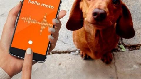 Motorola annuncia la nuova Moto Mod per Moto Z per parlare con i … – HDblog (Blog)