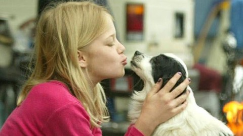 I cani fanno bene alla salute dei bambini fortificano i batteri contro … – Scienze Fanpage