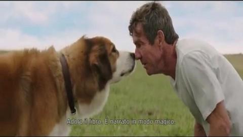Quando un cane è per sempre – Corriere della Sera