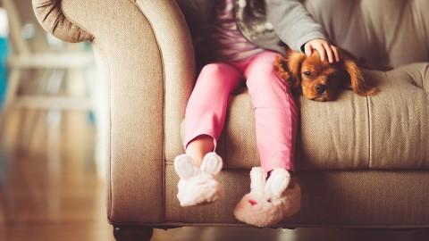 Soffrite di stress? Provate a risolvere con un animale domestico – Radio Monte Carlo