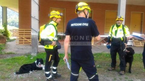 I test della Protezione Civile: cani-segugio per localizzare i dispersi – BergamoNews.it